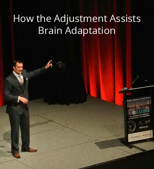 How the Adjustment Assists Brain Adaptation